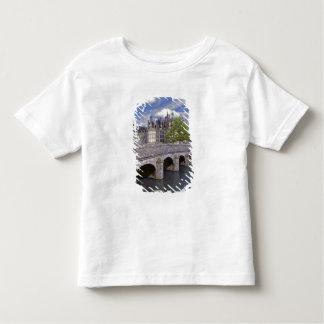 Europe, France, Chambord. A stone bridge leads T-shirts