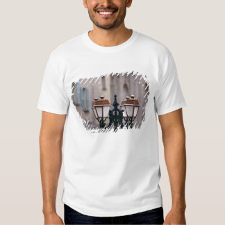Europe, France, Forcalquier. Old weathered Tees