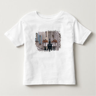 Europe, France, Forcalquier. Old weathered Toddler T-Shirt