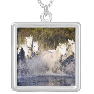 Europe, France, Ile del la Camargue. Camargue 2 Silver Plated Necklace