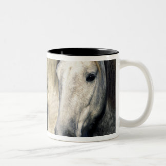 Europe, France, Ile del la Camargue. Camargue 3 Two-Tone Coffee Mug
