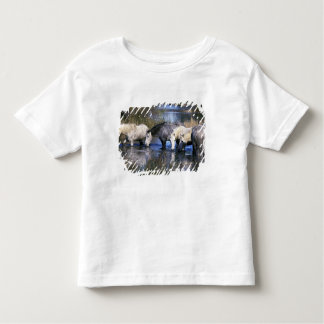 Europe, France, Ile del la Camargue. Camargue Tshirt