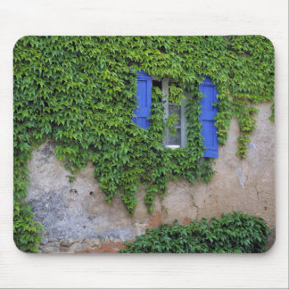 Europe, France, Lourmarin. Cascading ivy Mouse Pad