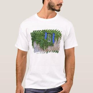 Europe, France, Lourmarin. Cascading ivy T-Shirt