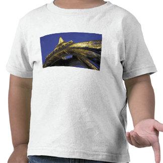 Europe, France, Paris, Eiffel Tower, evening 2 Tee Shirt