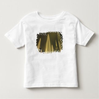 Europe, France, Paris, Eiffel Tower, evening Toddler T-Shirt
