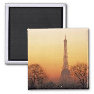 Europe, France, Paris. Eiffel Tower (Medium Magnets