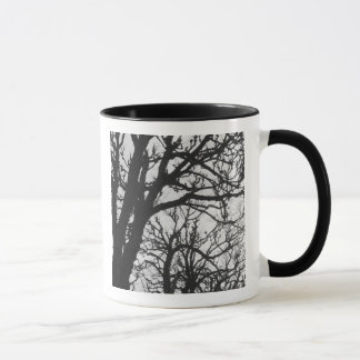 Europe, France, Paris. Winter trees, Marco Mug