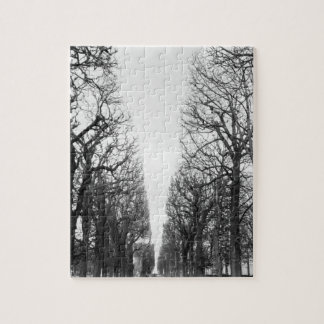 Europe, France, Paris. Winter trees, Marco Polo Jigsaw Puzzle