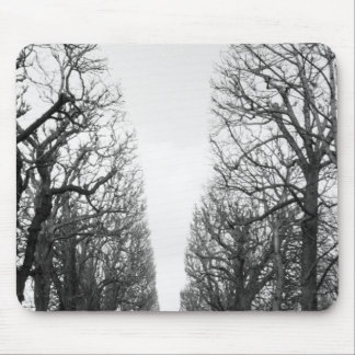 Europe, France, Paris. Winter trees, Marco Polo Mouse Pad
