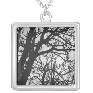 Europe, France, Paris. Winter trees, Marco Silver Plated Necklace