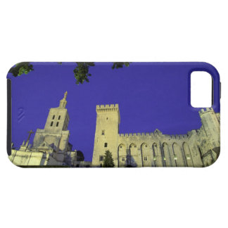 Europe, France, Provence, Avignon. Palais des iPhone 5 Cases
