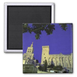 Europe, France, Provence, Avignon. Palais des Magnet