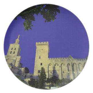 Europe, France, Provence, Avignon. Palais des Plate