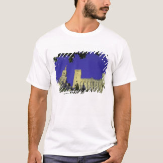 Europe, France, Provence, Avignon. Palais des T-Shirt