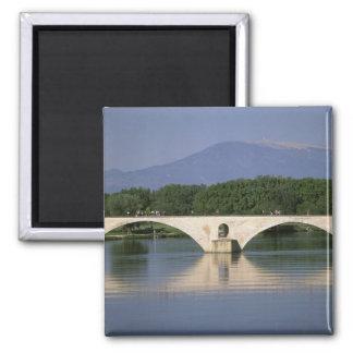 Europe, France, Provence, Avignon. Pont St, Magnet