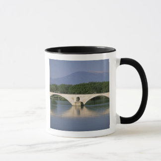 Europe, France, Provence, Avignon. Pont St, Mug