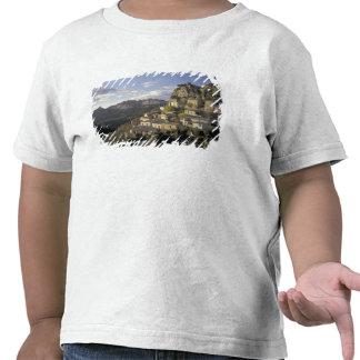 Europe, France, Provence, La Roque Alric, T Shirts