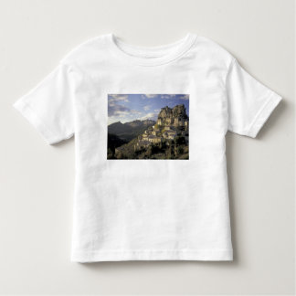 Europe, France, Provence, La Roque Alric, Tees