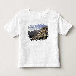 Europe, France, Provence, La Roque Alric, Toddler T-Shirt