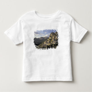Europe, France, Provence, La Roque Alric, Tshirt