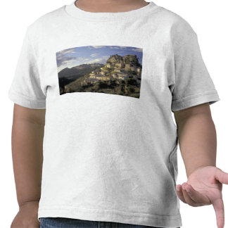 Europe, France, Provence, La Roque Alric, Tshirts