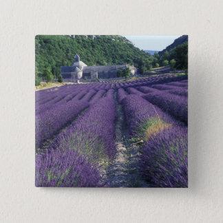 Europe, France, Provence. Lavander fields 15 Cm Square Badge