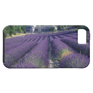 Europe, France, Provence. Lavander fields iPhone 5 Case