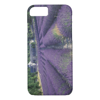 Europe, France, Provence. Lavander fields iPhone 7 Case