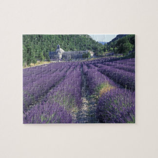 Europe, France, Provence. Lavander fields Jigsaw Puzzle