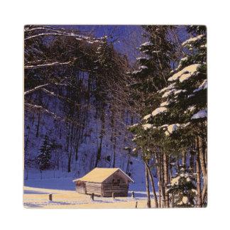 Europe, Germany, Bavaria, Garmisch - Maple Wood Coaster
