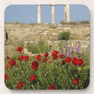 Europe, Greece, Cyclades, Delos. Column ruins. 2 Coasters