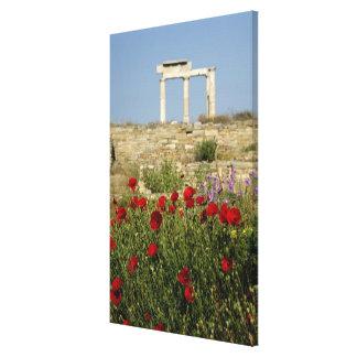 Europe, Greece, Cyclades, Delos. Column ruins. 2 Gallery Wrap Canvas