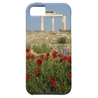 Europe, Greece, Cyclades, Delos. Column ruins. 2 iPhone 5 Case