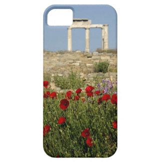 Europe, Greece, Cyclades, Delos. Column ruins. 2 iPhone 5 Case