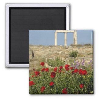 Europe, Greece, Cyclades, Delos. Column ruins. 2 Magnet