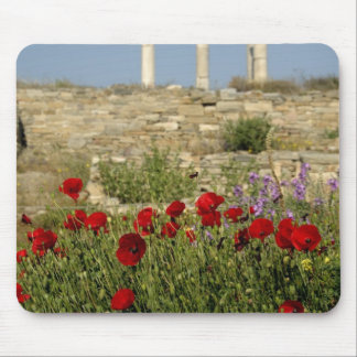 Europe Greece Cyclades Delos Column ruins 2 Mouse Pads