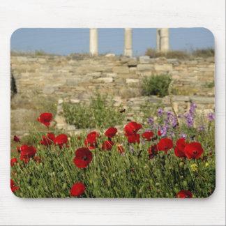 Europe, Greece, Cyclades, Delos. Column ruins. 2 Mouse Pad