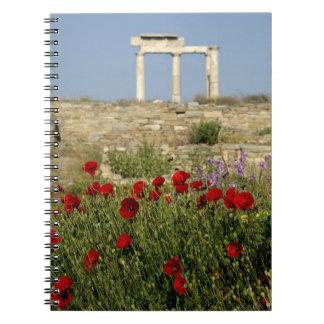 Europe, Greece, Cyclades, Delos. Column ruins. 2 Note Books