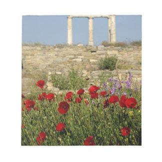 Europe, Greece, Cyclades, Delos. Column ruins. 2 Notepad