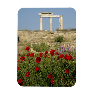 Europe, Greece, Cyclades, Delos. Column ruins. 2 Magnets