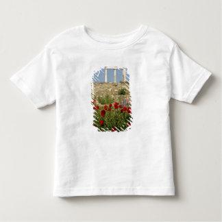 Europe, Greece, Cyclades, Delos. Column ruins. 2 Shirt