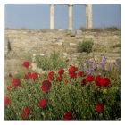 Europe, Greece, Cyclades, Delos. Column ruins. 2 Tile