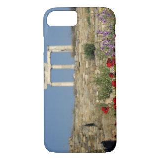 Europe, Greece, Cyclades, Delos. Column ruins. iPhone 8/7 Case