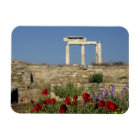 Europe, Greece, Cyclades, Delos. Column ruins. Magnet