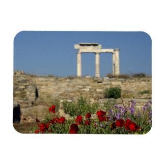 Europe, Greece, Cyclades, Delos. Column ruins. Vinyl Magnet