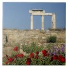 Europe, Greece, Cyclades, Delos. Column ruins. Tile