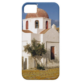 Europe, Greece, Mykonos. Fishing nets dry on the iPhone 5 Covers
