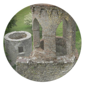Europe, Ireland, Blarney Castle. THIS IMAGE Plate