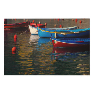 Europe, Italy, Cinque Terry, boats in Vernazza Wood Wall Art